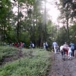 prestatie als thema voor wandelcoaching voor de groep