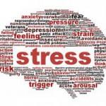 ons denken maakt ons stress systeem wakker
